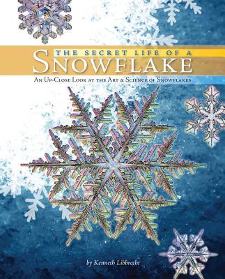 The Secret Life of a Snowflake By Libbrecht, Kenneth/ Sorenson, Vanessa (ILT)